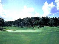 ザ ゴルフ クラブ 竜ヶ崎 天気